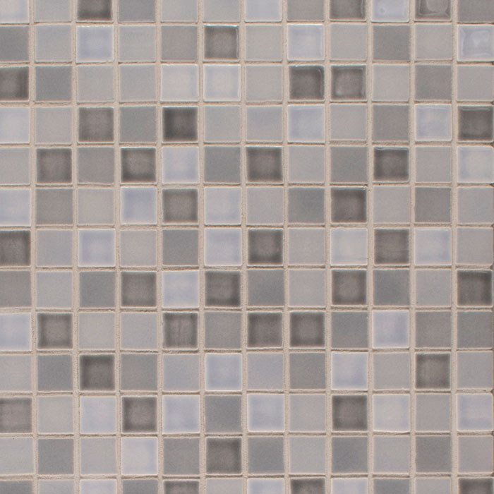 Pratt and Larson Tile Portland 1x1