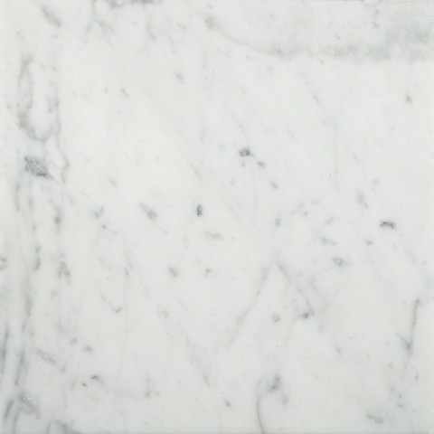 Bianco Carrara Honed Stone Field Tile